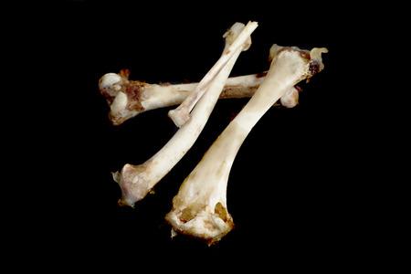 bones on a black background Stock Photo