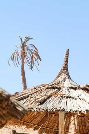 empty old beaches sunbeds umbrellas sand