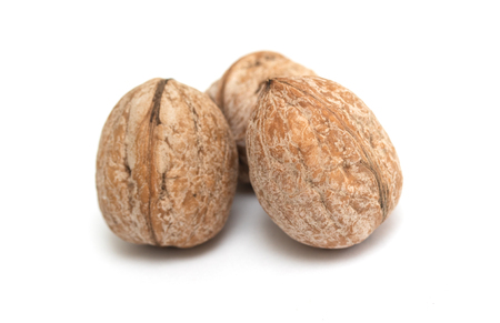 walnut on white background Imagens