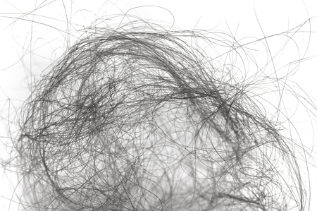 lock of hair on white background close-up 스톡 콘텐츠