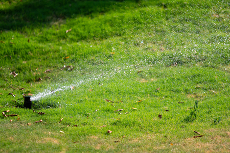 Defocused, Irrigation system watering the green grass with bokeh background. Stock Photo