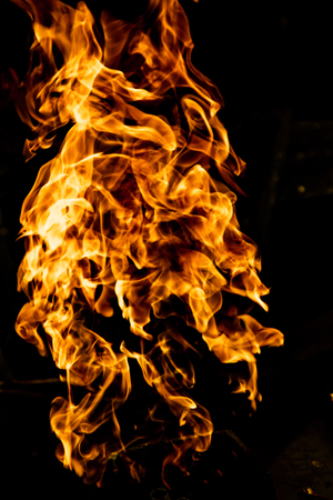 Fire flames on a black background 免版税图像