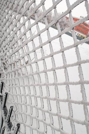 metal mesh in winter snow