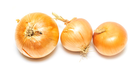 onions on white background