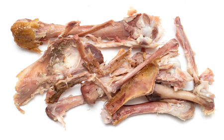 chicken bones after eating on a white background Imagens - 124979541