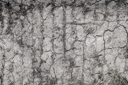 Background cracked earth, black earth texture.
