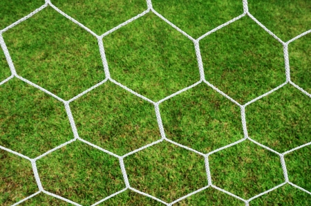 goal post: Focus on White Football Net