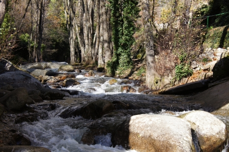 olla: Waterfall and forest in Garganta de la Olla, river, trees and wild vegetation  Vera, Extremadura, Spain Stock Photo