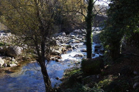 backlighting: Mountain river, rocks, stone bridge, trees with moss and ivy, backlighting, autumn leaves, Vera, Spain