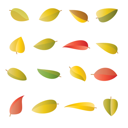 Set of multicolored bright autumn leaves, in vector Illustration