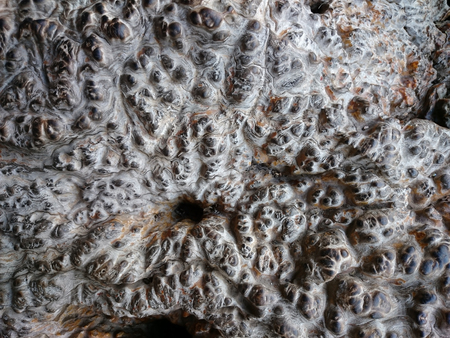 Brown lava rock background texture. Uneven surface with pimples. Clinker wall or ground rusty pattern. Grey ancient bubbly stone, relief structure.  Foto de archivo