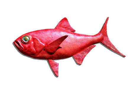 Red fish isolated photo