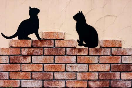 paredes de ladrillos: Pared y la sombra del gato