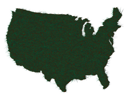 AMERICA MAP GRASS Illustration