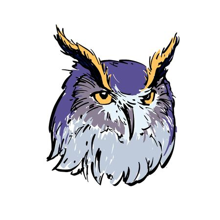 Realistic color drawing of an owl's head. For coloring. Vector illustration.