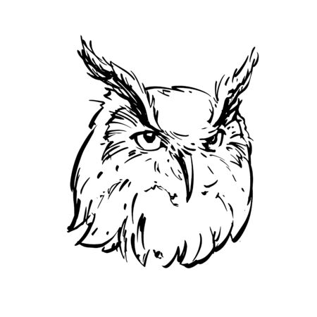 Realistic black and white drawing of an owl's head. For coloring. Vector illustration. Ilustração