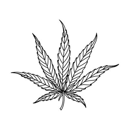 Marijuana leaf. Linear icon. Isolated on white. Vector illustration Ilustração