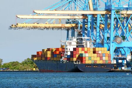 Containerschiffe unter den Entladeportalkränen.