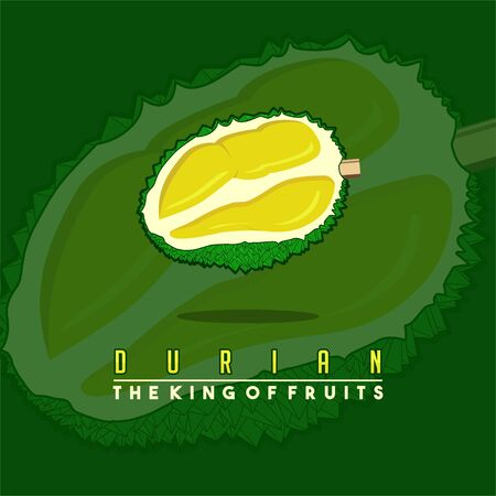 Durian fruit Vector Illustration for template design Stock fotó - 138269470