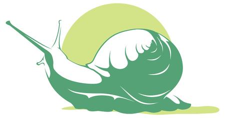 slow food: Vector snail Illustration