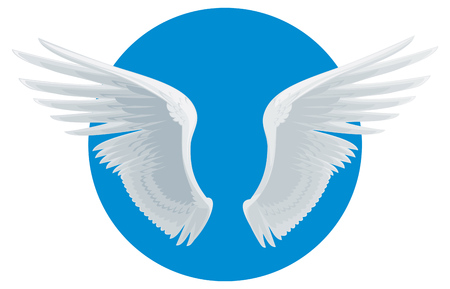 angel white: Vector white angel wings isolated Illustration