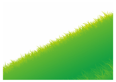 illustration of Summer background with green grass Stock Photo