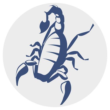 Scorpion,  image for the tattoo, symbol