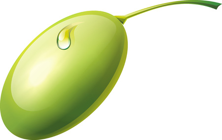 Realistic green olives with drop. Isolated on white background. Stock Photo