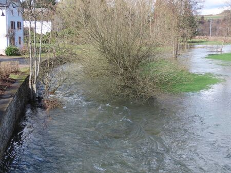 High water of spring floods rushing around a shrub on elevation 版權商用圖片