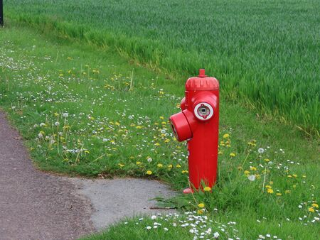 Bright red fire hydrant by the street with green field as background