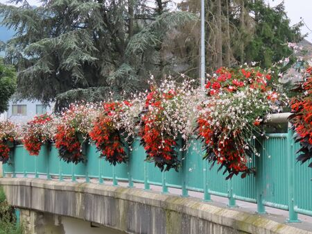 Railings of a village bridge with many flower pots on them with red and white flowers in Walferdange, Luxembourg, on a summer day