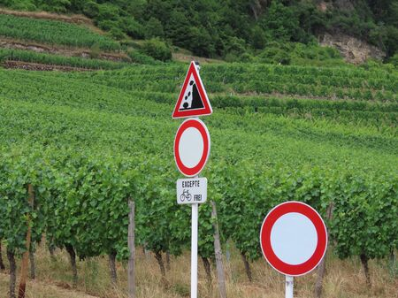 Road signs warning triangle Falling rocks, debris, landslides, two prohibitory circles No Vehicles with plaque allowing bicycles - cycle icon and word Except in French and German. Vineyard