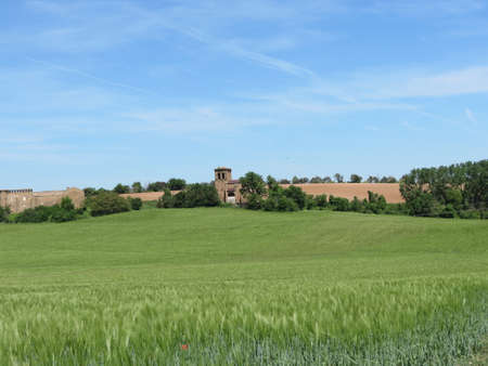 Green fields of wheat and church ruins in the distance, near Pamplona, Navarra, Spain, on sunny summer day Banque d'images