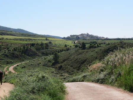 Camino de Santiago road winding thorough sunny summer landscape in Navarra, Spain
