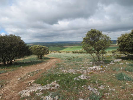 Sierra de Atapuerca by Burgos, in Castile and Leon, northern Spain. Camino de Santiago pilgrimage route passing over it.