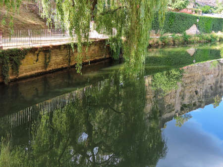 Weeping willow branches reaching towards calm river, cliff of Luxembourg Casemates reflecting in water Banque d'images