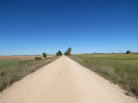 Dirt road going straight in the distance on Meseta, Spain. Camino de Santiago stage.