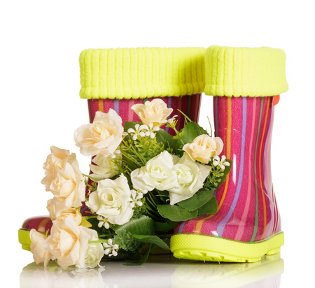 Children rubber boots with fabric insert and a bouquet of roses isolated on white background. Stock Photo