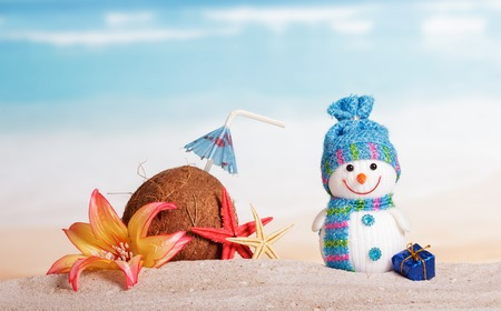 Coconut, starfish, flower, snowman and Christmas present in the sand against the sea.