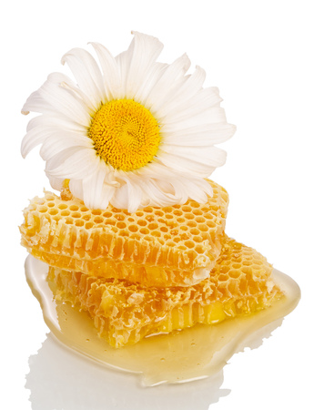 Honey comb and daisy isolated on white background.