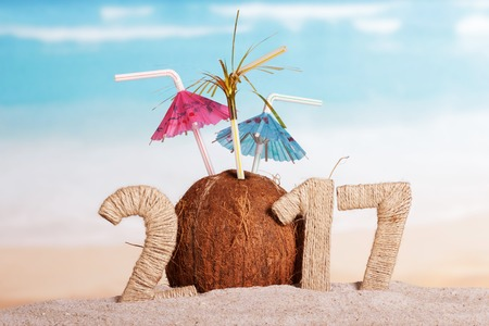 Coconut instead of the number 0 in the amount of 2017 against the backdrop of the sea.