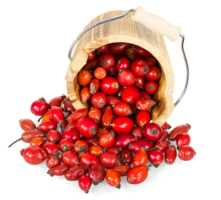frustrate: Frustrate wooden bucket and fresh rose hips isolated on a white background.