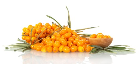 argousier: Lots of sea-buckthorn with berries and a spoon isolated on white background.
