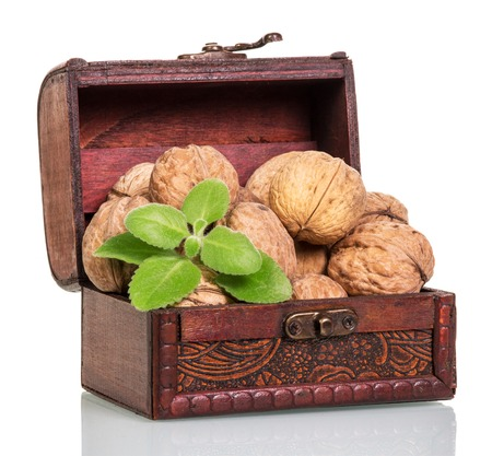 full willow: Chest with walnuts isolated on white background.