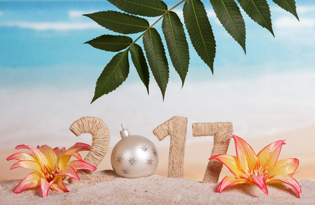 217 Digits twined with with string and new year ball instead of 0, leaves, flowers in the sand against the sea.