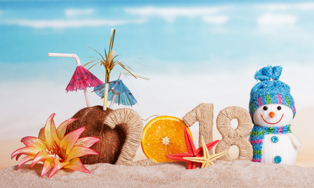 New Year inscription 2018, half of the orange instead of the numbers 0, coconut with straws and sunglasses, a flower in the sand. Stockfoto