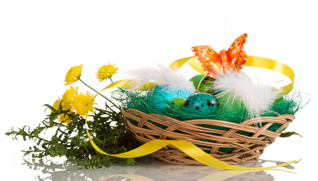 basketry: Colored Easter eggs in the basket, grass and butterfly isolated on white background.