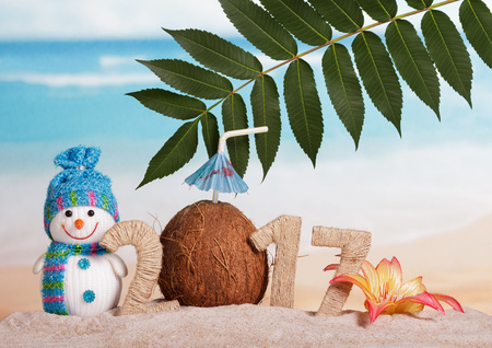 Digits 217 twined with twine, coconut instead of 0, leaves and flower in the sand against the sea. Stock Photo