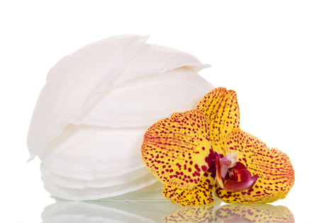 Absorbent breast pads and orchid flower isolated on white background.