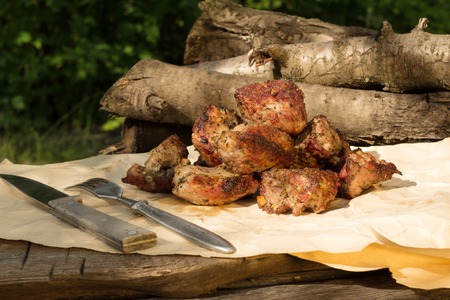 Picnic in the village. Juicy shashlik on a rustic table outdoors 版權商用圖片 - 124679760